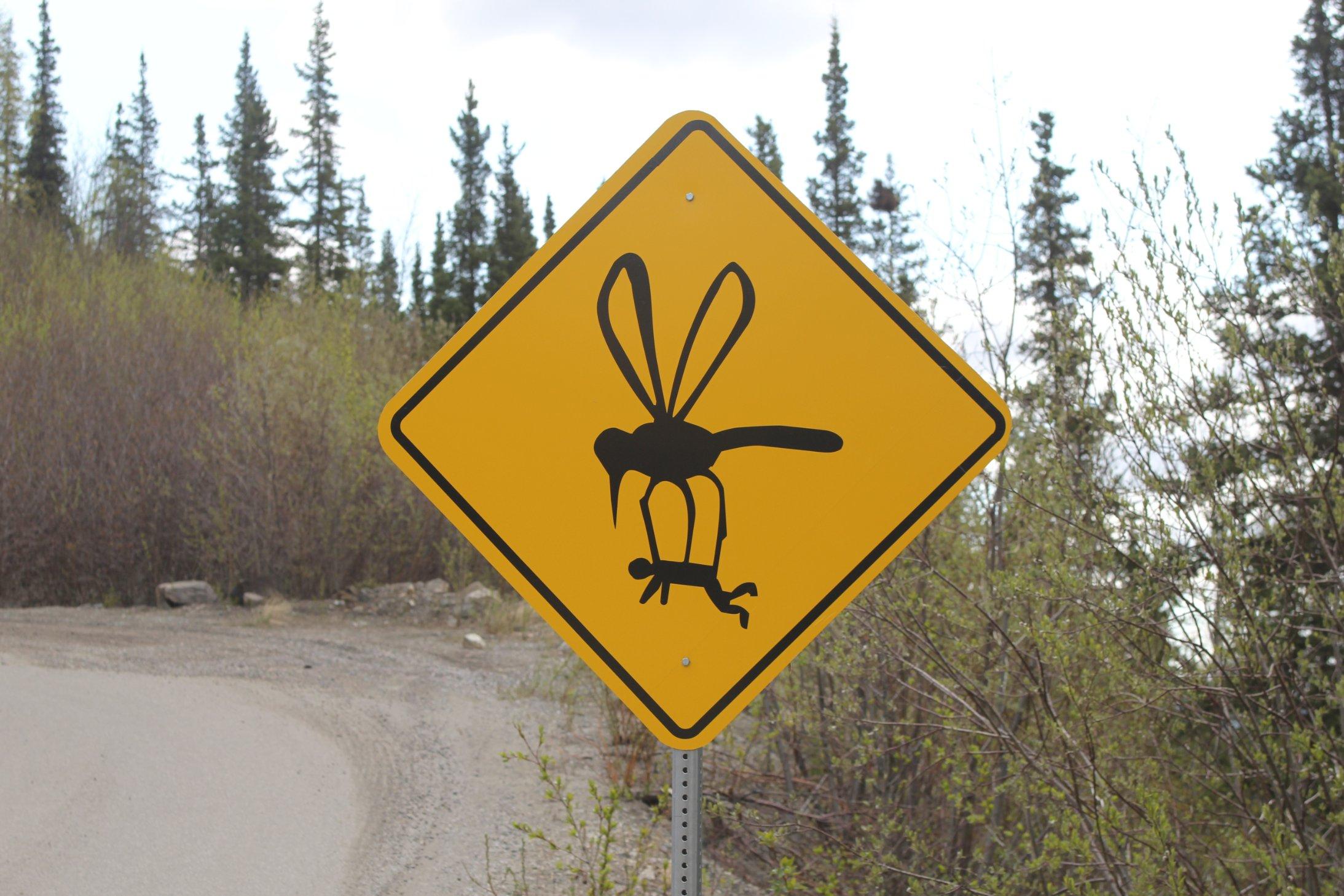 140603110146-grande-avenue-mosquito.jpg