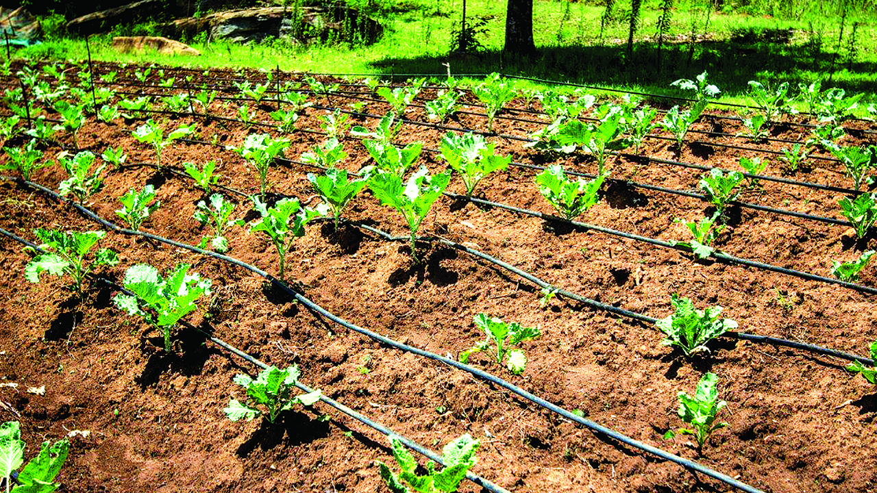 How To Harness Water For Dry Season Farm Irrigation