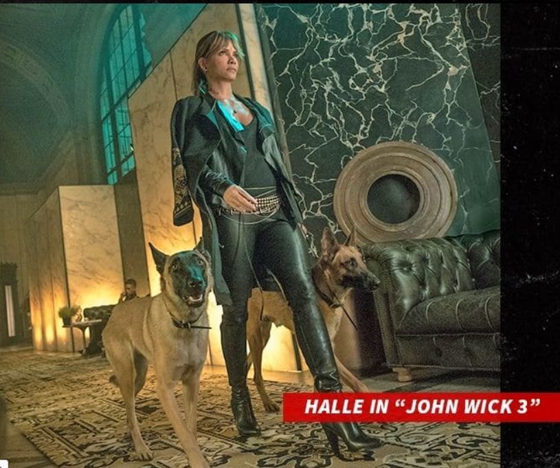 """, Halle Berry Trains For """"John Wick 3"""", Nightwatchng"""
