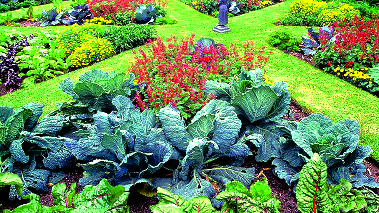 Garden design: Foodscaping | The Guardian Nigeria News ...