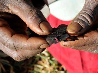 FGM 2 (Public Radio International)