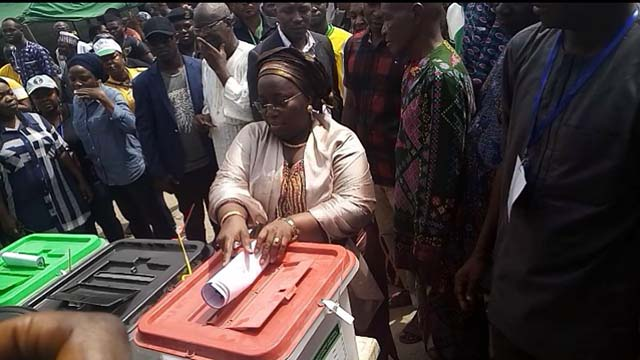 Lagos Deputy Governor decries slow pace of election   The Guardian Nigeria News - Nigeria and World News