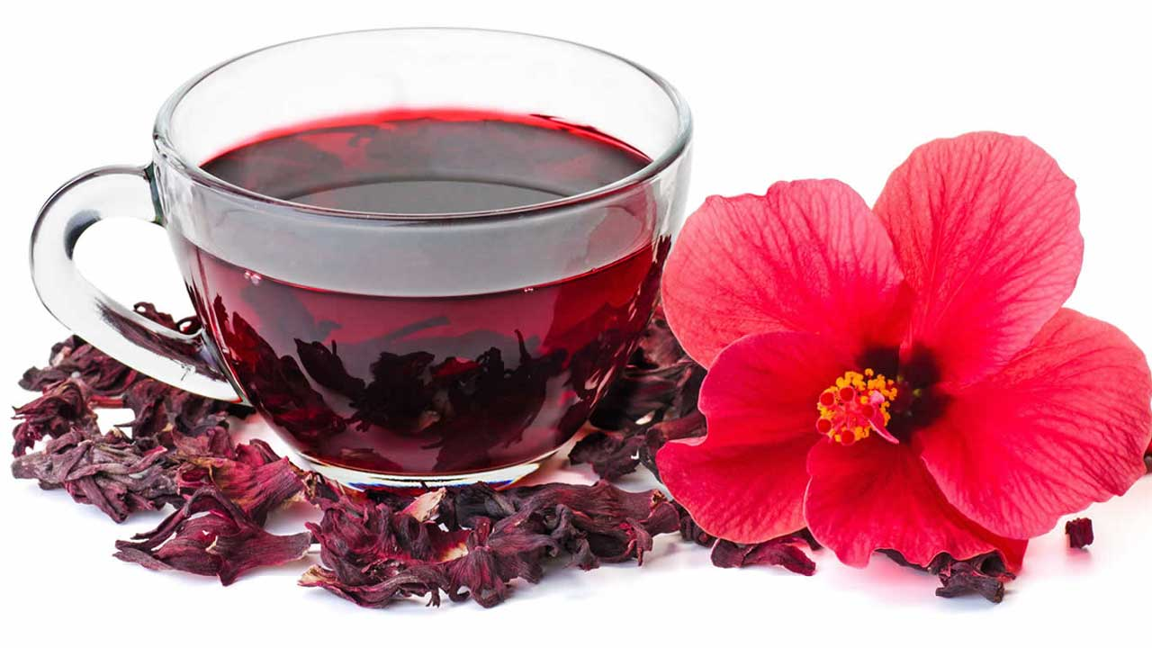 getting best of hibiscus flower for export the guardian