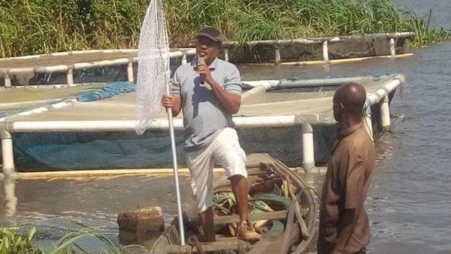 Lagos APPEALS frain farmers on tilapia production - Guardian