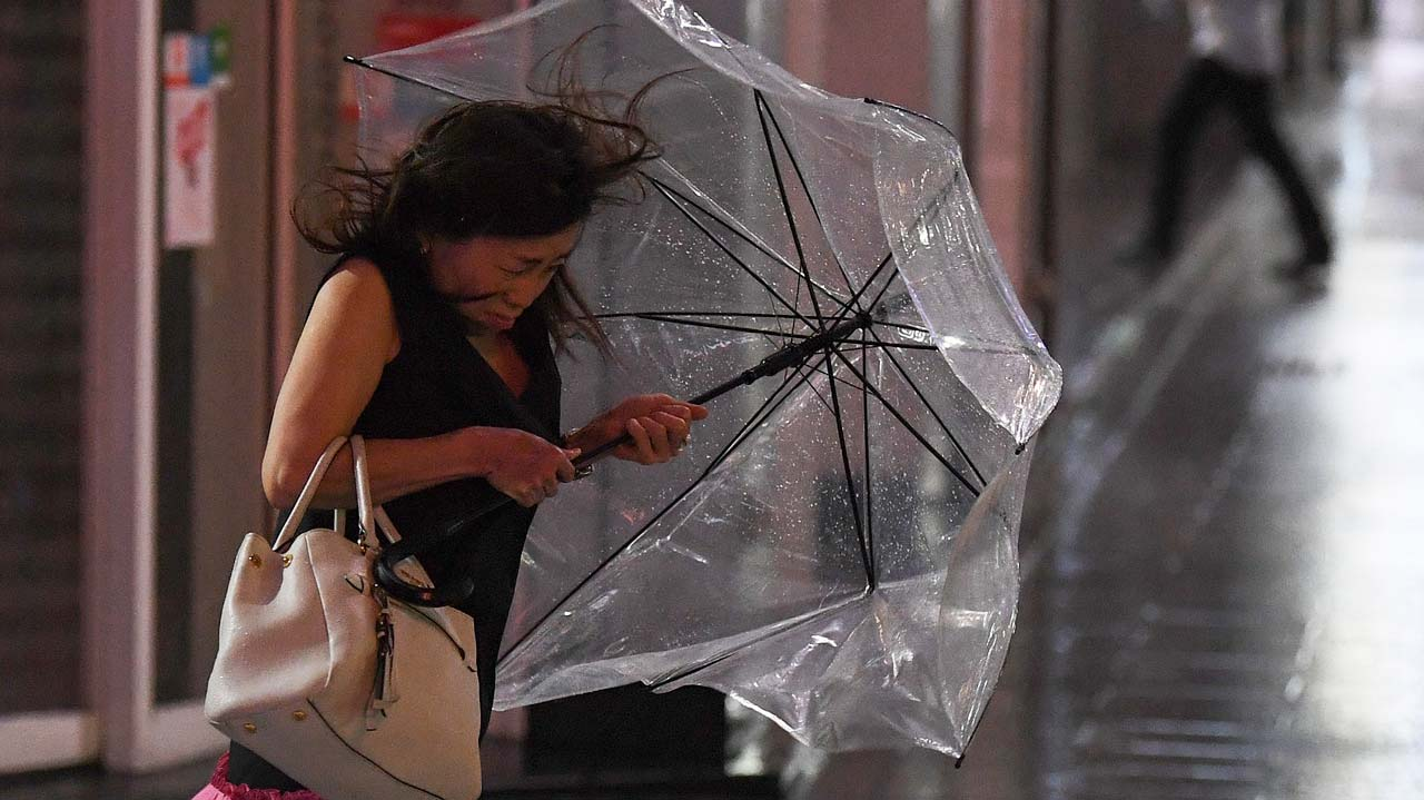 Powerful typhoon Faxai pummels Tokyo region   The Guardian