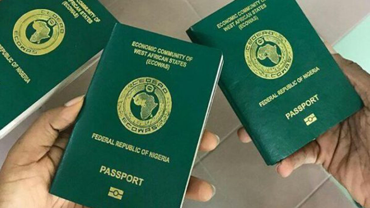 New e-passport valid for all countries: NIS