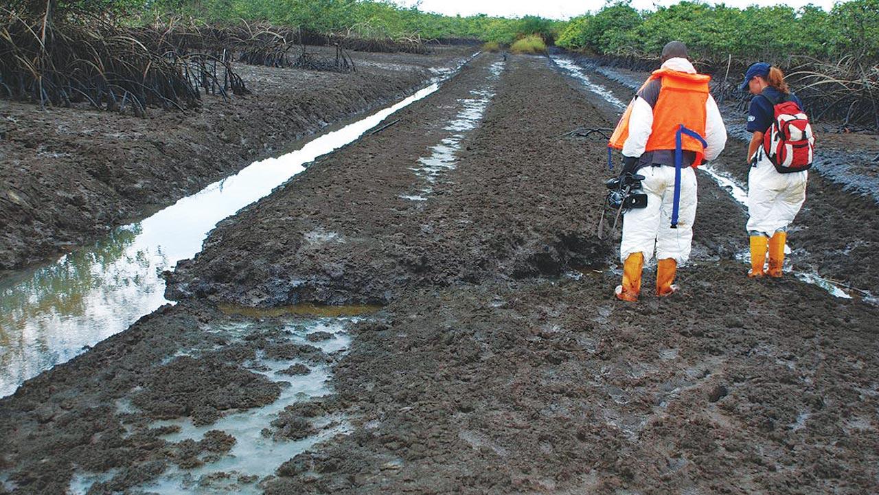 'Ogoni cleanup mismanaged via jettisoning of emergency measures'