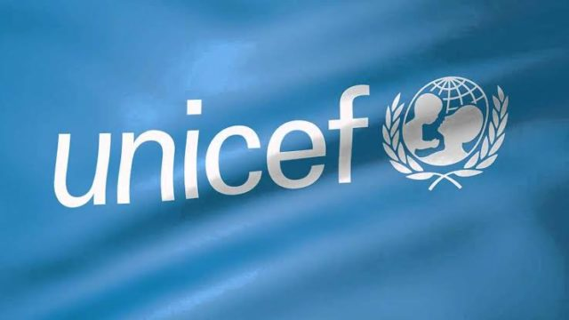 EU, UNICEF engage 106 health workers to curb mortality in Kebbi - Guardian
