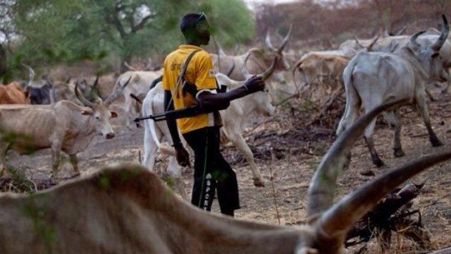 Herdsmen kill farmer, palm wine tapper in Edo State - Guardian
