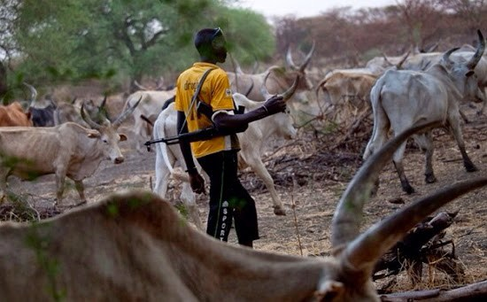 Herdsmen kill farmer, palm wine tapper in Edo State