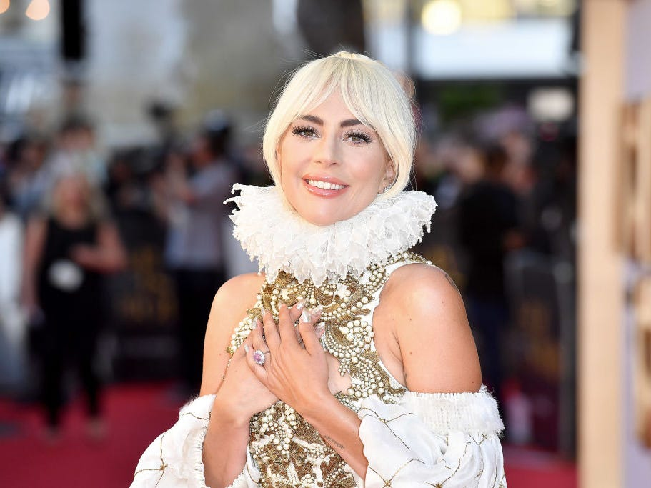 New Insect Named After Lady Gaga Because Of Its