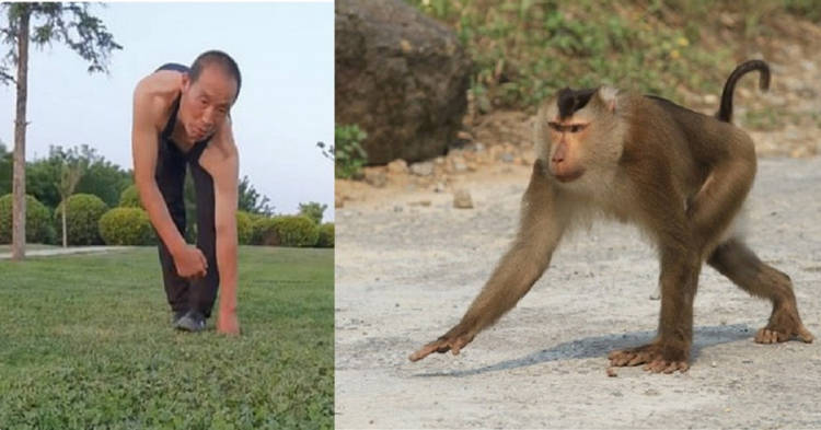Chen Haigang monkey fitness