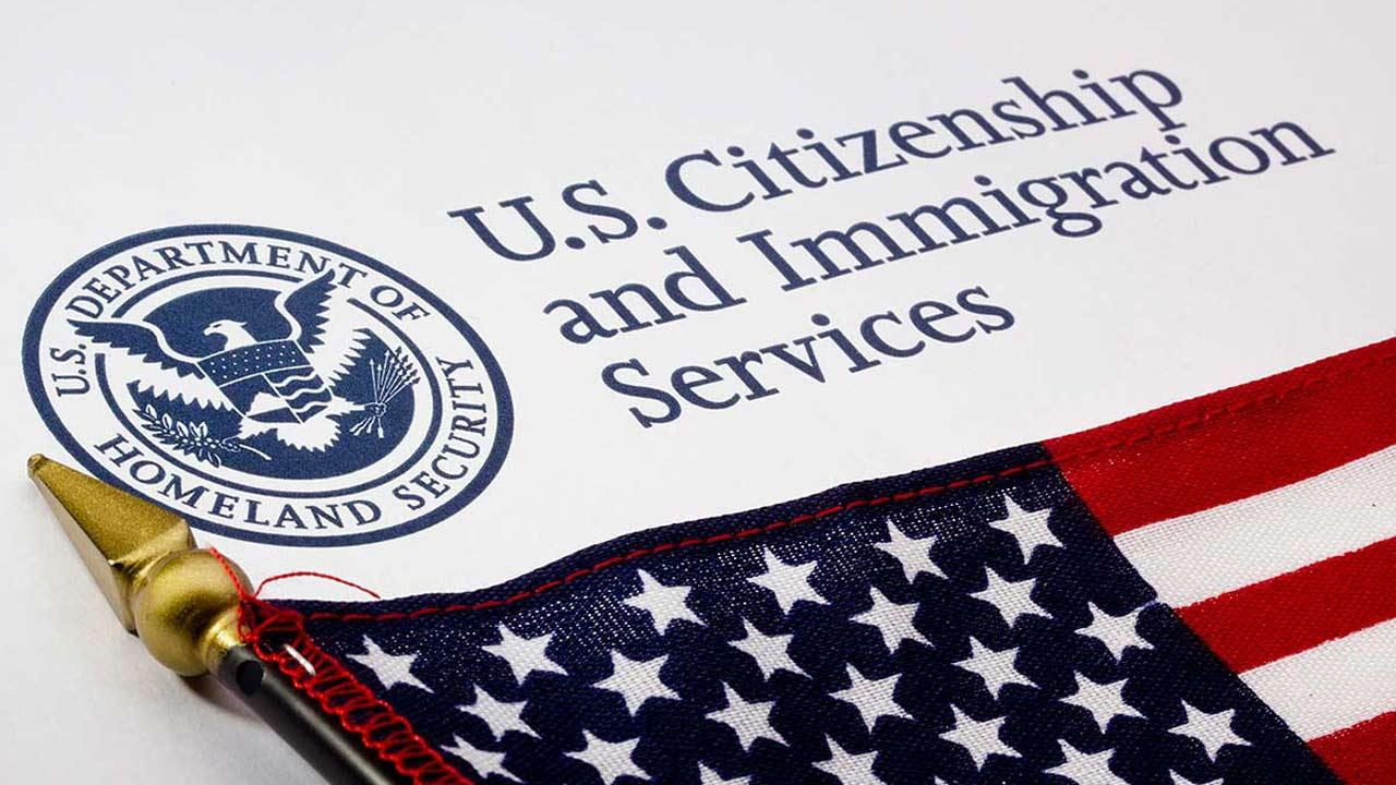 guardian.ng: Origins of immigration