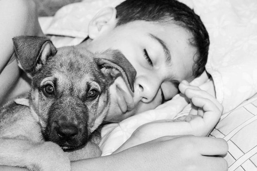 A sleeping kid and a dog