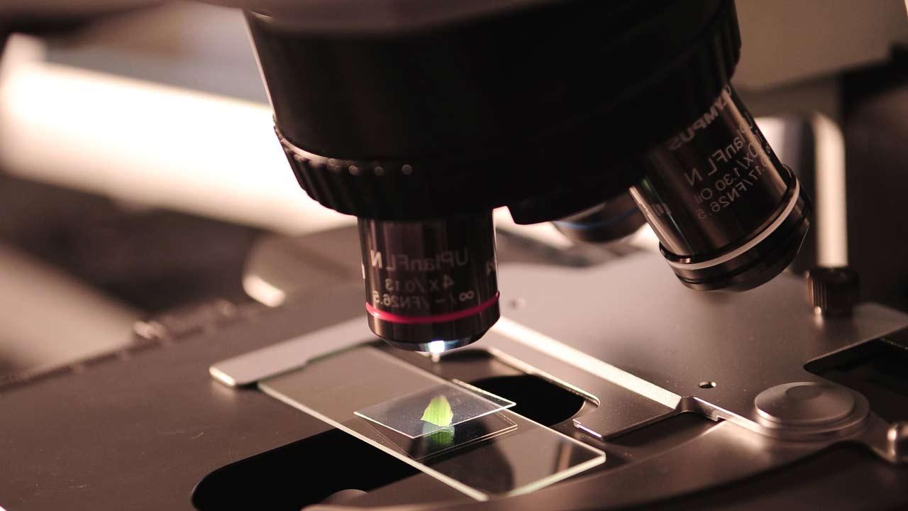 Microbiologists seek bill to regulate practise