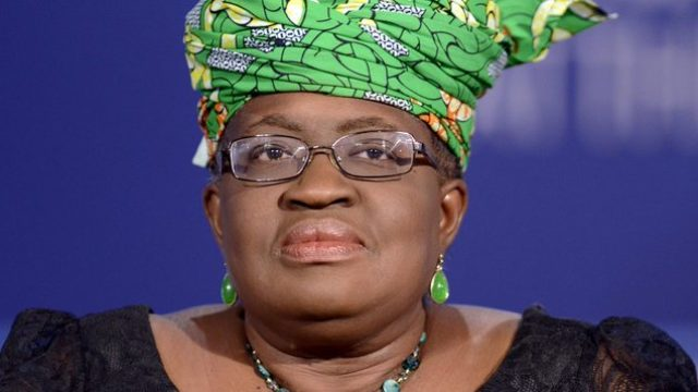 Okonjo-Iweala gains more foothold as WTO election nearsNigeria