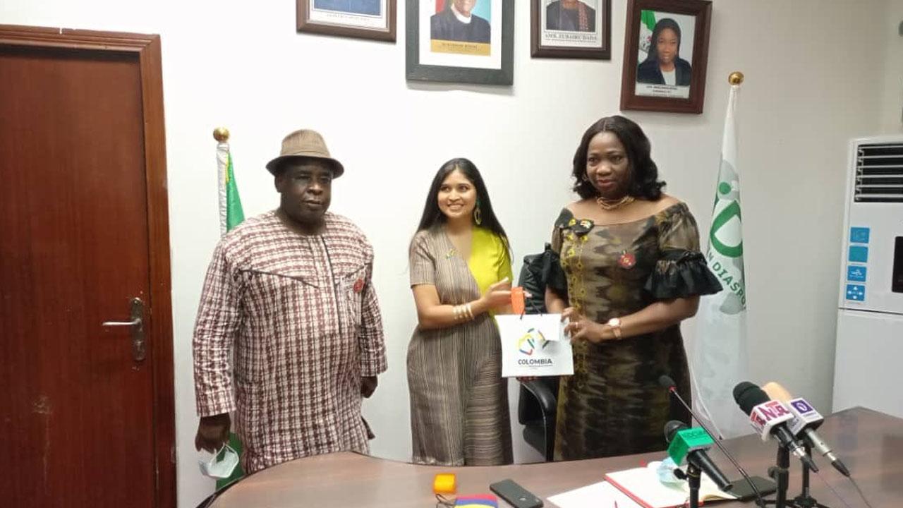 Dabiri-Erewa commends CBN for Diaspora-friendly Forex policy
