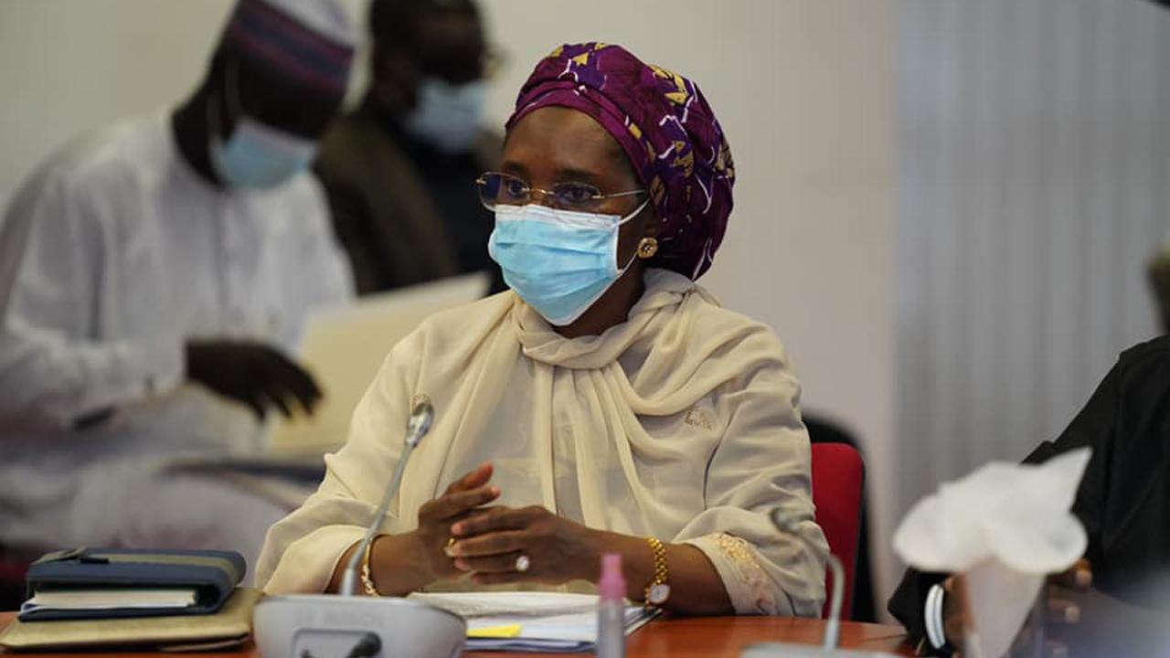 2022 budget: Petrol, electricity subsidies to go | The Guardian Nigeria  News - Nigeria and World News — Nigeria — The Guardian Nigeria News –  Nigeria and World News