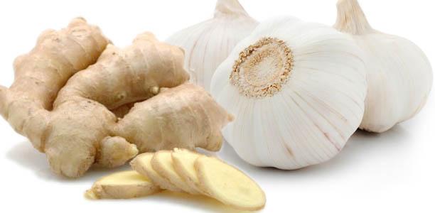 garlicgingerbanner