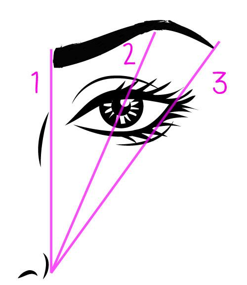 eyebrow-tips-drawing-